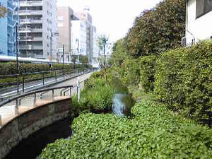 Sibuygawa20141011
