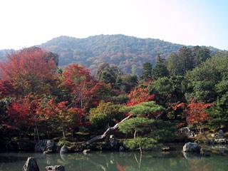 tenryuuji-ike