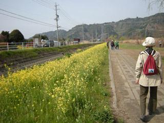 Asabata_20080323_0