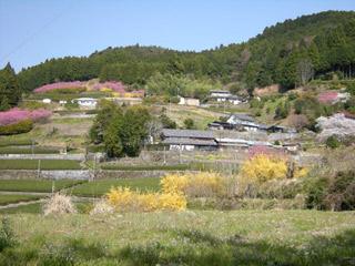 Sibukawa20080406