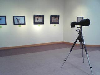 Kawasemiphotoclub2008
