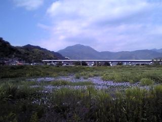 Asabata081002
