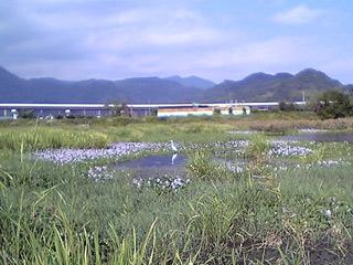 Asabata081002_2