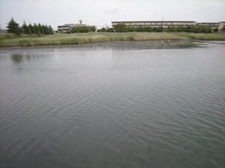 Yatsuhigata_090821_1