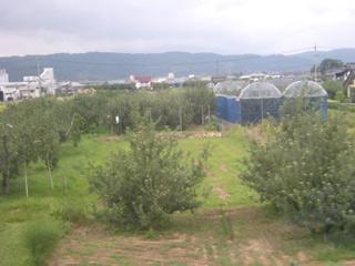 Nagaden080907_4