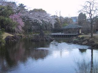 Momijiyamaniwa